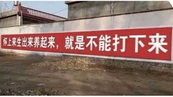 新華社三胎民調遭打臉急刪 民憂重啟「強制生育」