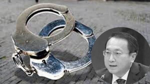 中国政法大学原副校长于志刚被双开
