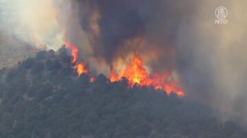 加州天堂镇迪克西山火延烧 仅控制15%