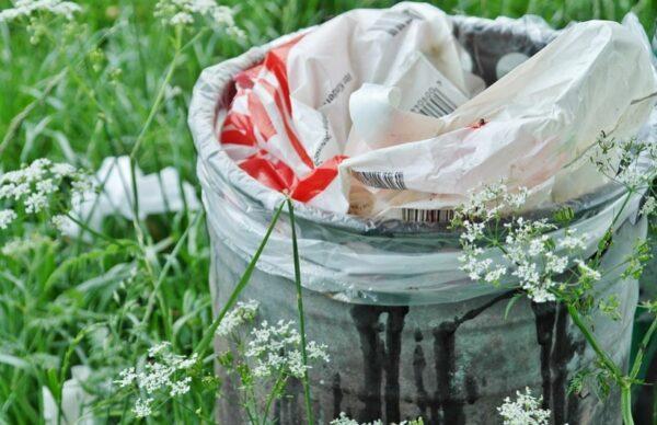 在夏天如何避免苍蝇在厨余桶繁殖?