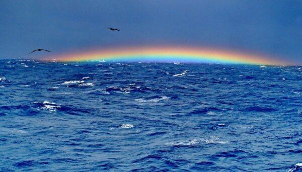 20人遊艇百慕大三角失蹤 人員下落不明