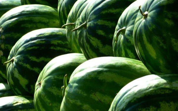 西瓜清熱解暑 聰明吃西瓜 美味又健康
