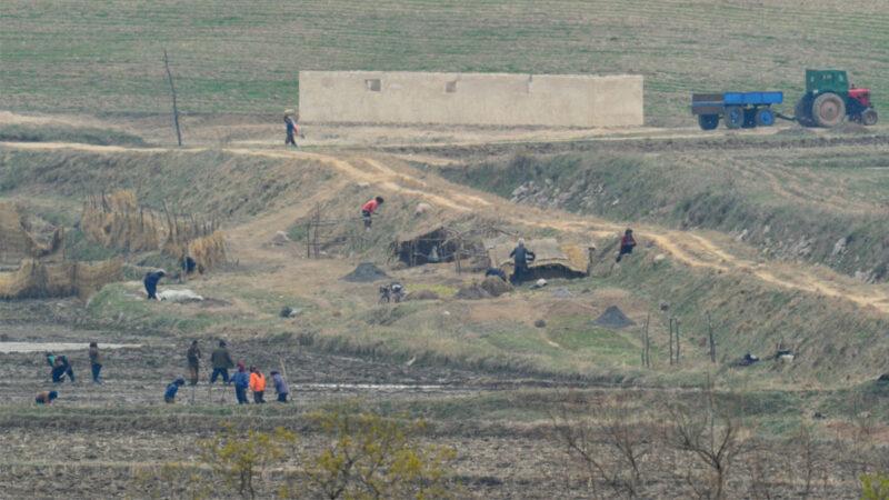 朝鲜情况不妙? 平壤俄罗斯公民大量撤离