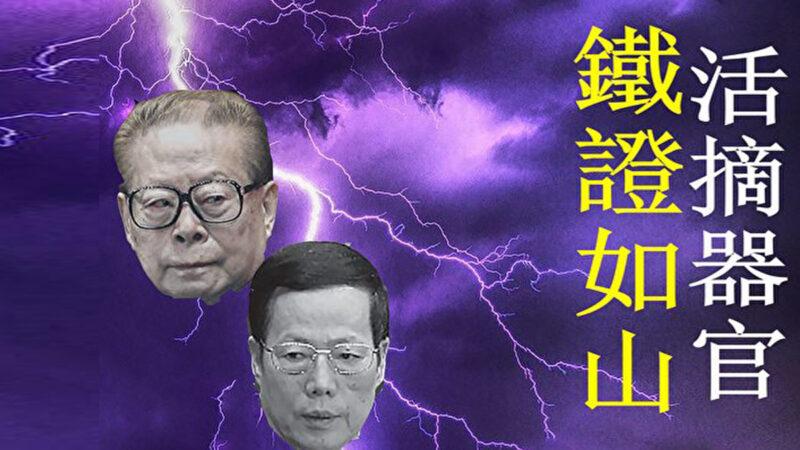 【內幕】張高麗為何承認江澤民是活摘元凶
