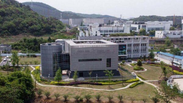 武漢P4實驗室主任爆疫前發文:實驗室正處危險中