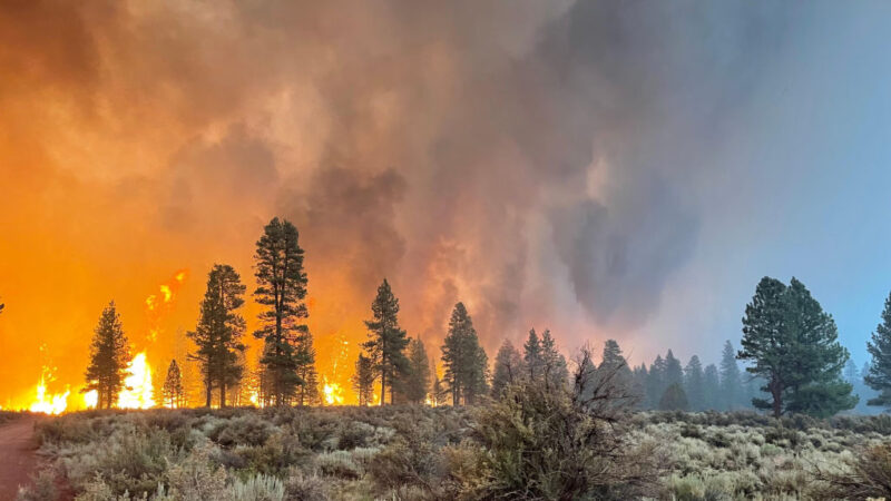 美西野火狂烧24万英亩 仅控制7%强制疏散3000户