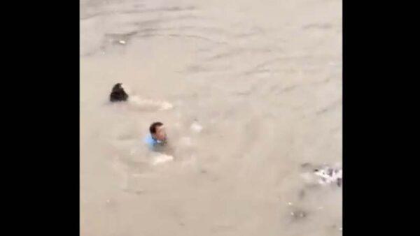 河南洪災死傷慘烈視頻接連流出 鄭州至少12死
