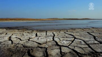 50县紧急干旱 纽森吁民众自发节水15%