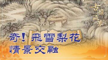 【古韻流芳】岑參邊塞詩 飛雪似梨花