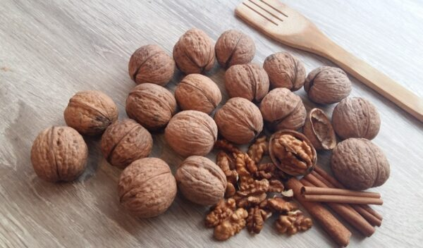 抗癌護心補腎健脾胃 7大堅果的食療功效