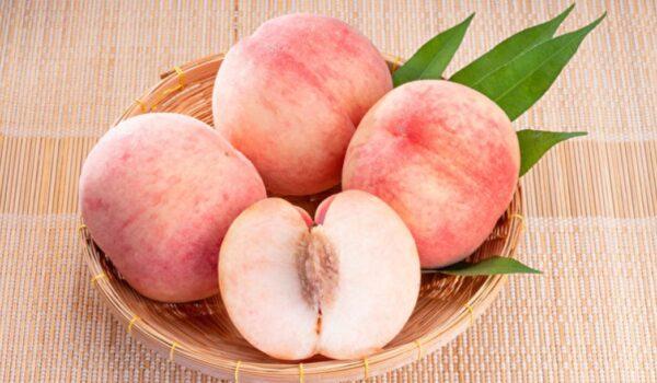 夏日絕佳水果桃子的多種吃法
