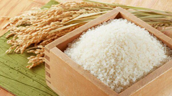 糙米、胚芽米、发芽米哪种好?这吃法最补
