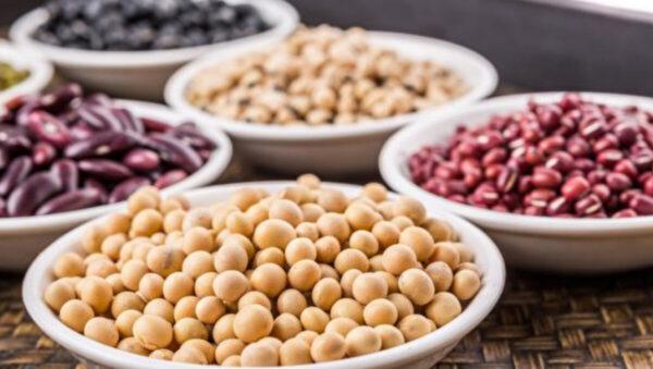 """这些""""豆""""很多人搞混 2招区分、吃对才养身"""