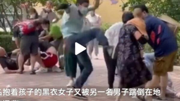 游客打群架 北京野生动物园声明火了
