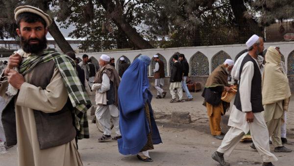 塔利班封锁巴国边境路线 暂停对印贸易