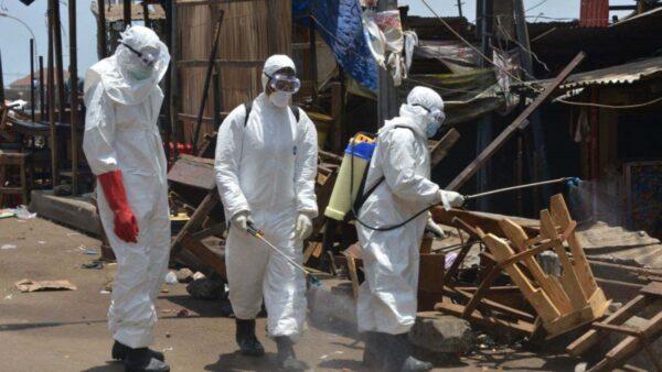 西非首现马尔堡病毒死亡病例  WHO:致死率达88%