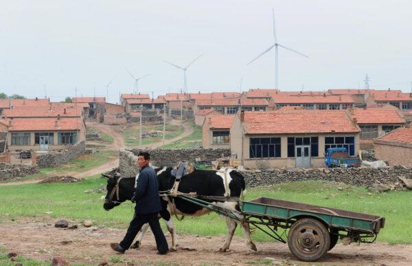 北京现一例肺炭疽传染病例 来自河北围场