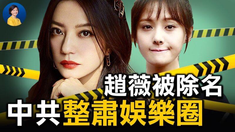 """【热点互动】赵薇犯""""七宗罪""""?中共掀起娱乐圈文革"""