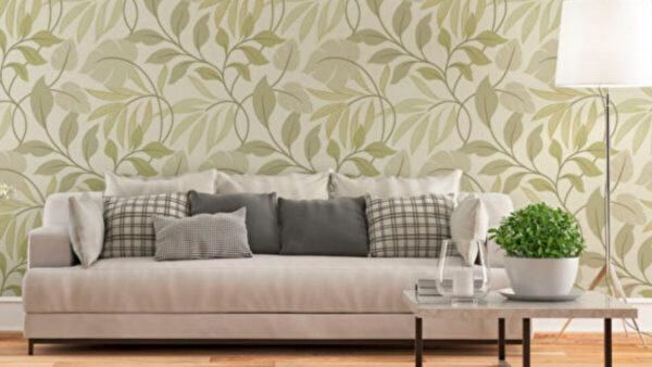 不能粉刷公寓?試試替代油漆的五種方法