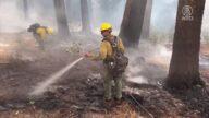 加州上百縱火犯被捕 當局憂連年增長