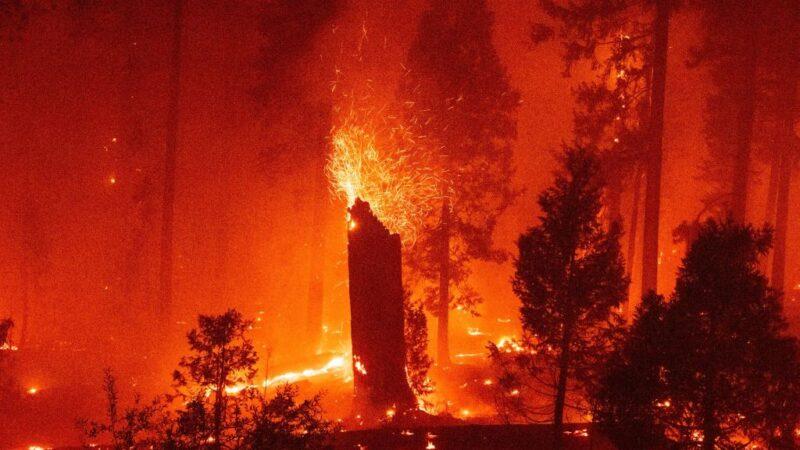 美西野火延燒 好萊塢特效設計「造雪槍」派上用場