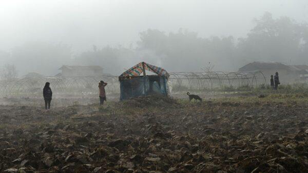 中共在中緬邊界埋地雷防偷渡 輿論轟違反國際公約