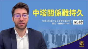 中塔關係難持久  加拿大阿富汗安全學會