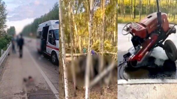 黑龙江重大车祸15死1伤 死者多是摘花民工(视频)