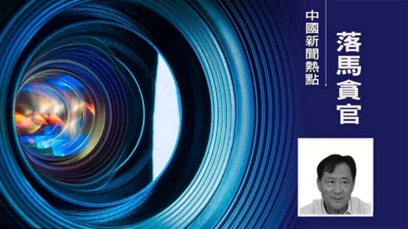 中国国电集团原副总经理谢长军被逮捕