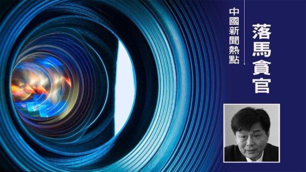 天津津南法院前院長趙蘭閣被查 履歷罕見未公開