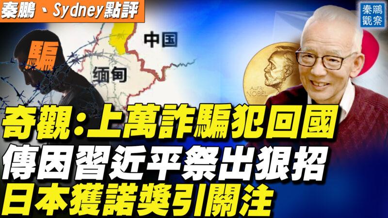 【秦鵬直播】上萬詐騙犯回國 傳習近平祭出狠招