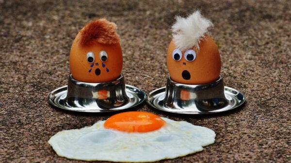 白水煮鸡蛋 最营养的吃法