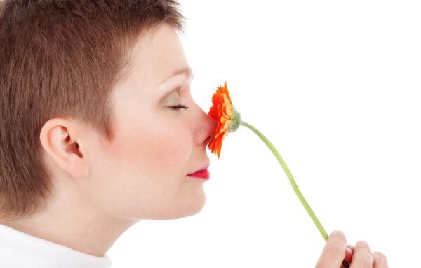 为何两个鼻孔的气流不平均 有时轮流阻塞?
