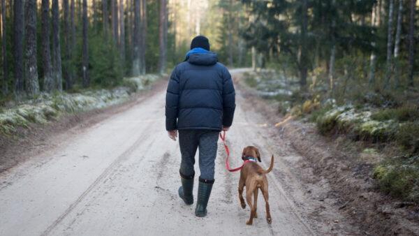 """长期走路更长寿?65岁过后做好""""3件事"""""""