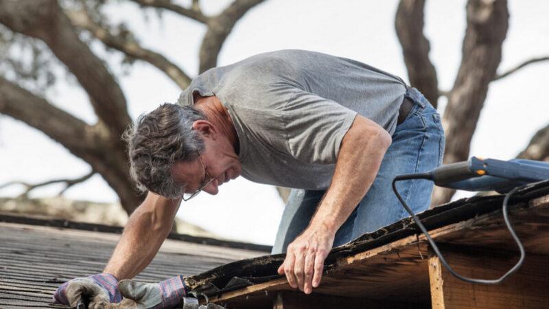 秋天要做的五项维修工作 安心让房屋过冬