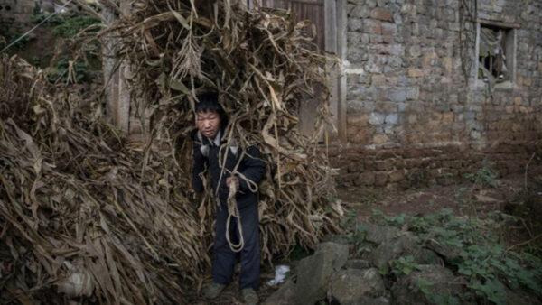 外媒記者揭中共脫貧造假 遭中共官員檢舉攻擊
