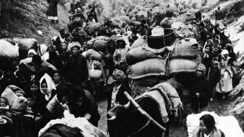 長津湖戰役細節 美軍救走文在寅父母等10萬平民