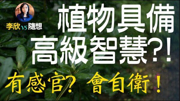 【李欣随想】植物具备高级智慧!?有自己的感官!?