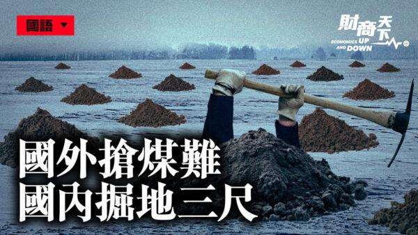 【財商天下】中共全球搶煤 國內掘地三尺